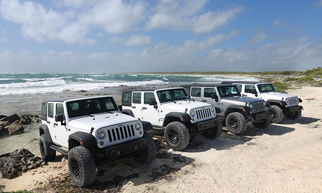 monster-jeep-to-hidden-mayan-ruin-and-virgin-beach-exclusive-CZ1Z-mosaic