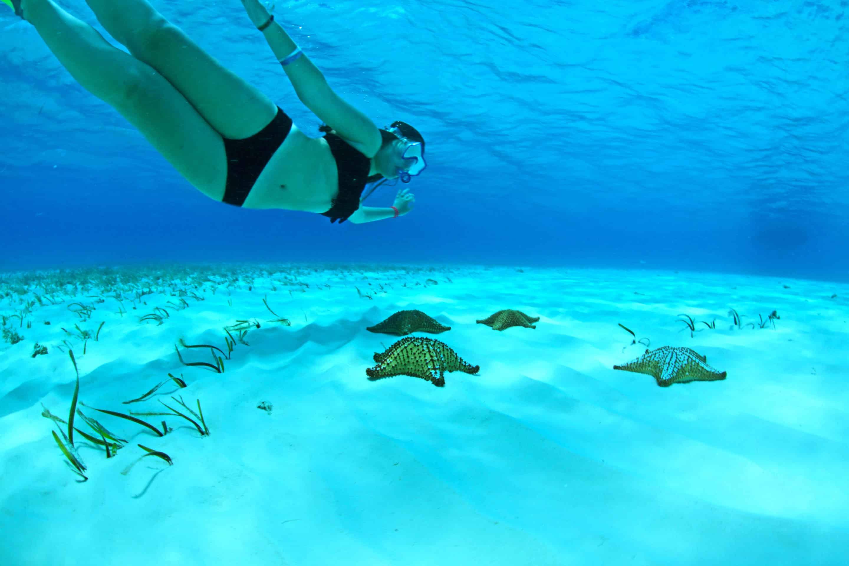 snorkel-el-cielo-cozumel5